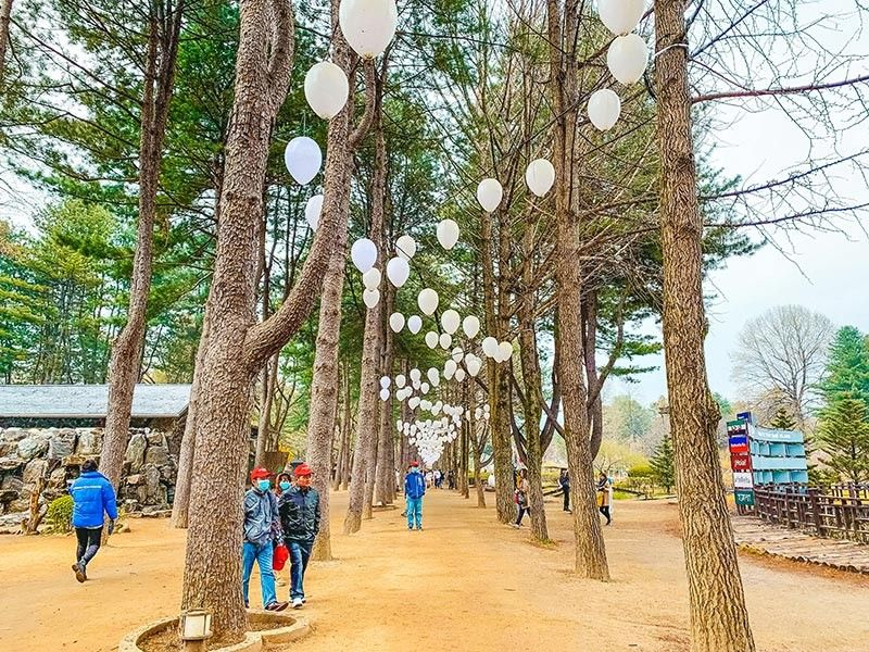 NAMI ISLAND. A whimsical moon-shaped fairy land.