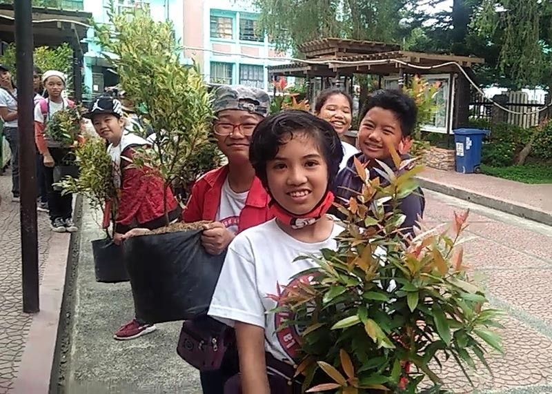 BENGUET. Students from La Trinidad Central School participate in the adopt a tree program held June 21 along the one kilometer stretch road of the Benguet capital town. The activity aims to encourage the children value of planting and nurturing trees. (Lauren Alimondo)