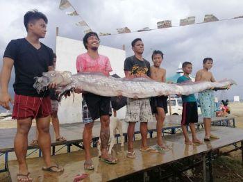 CEBU. An oarfish was found in Barangay Poblacion, Compostela, Cebu on Monday, June 24, 2019. (Photo from Compostela MDRRMO Facebook page)