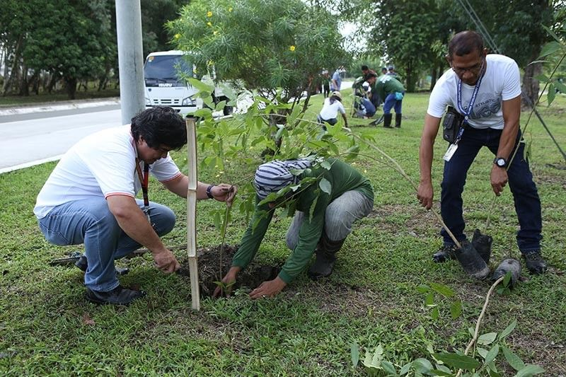 PAMPANGA. Clark Development Corporation (CDC) through its Environmental Permits Division led by its manager Rogelio Magat together with other CDC employees celebrated National Arbor Day in a tree planting activity held at the Creek Side Road in Clark Freeport Zone. (CDC-CD Photo)
