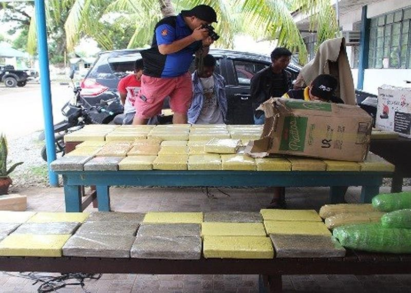 BAGUIO. Kalinga police process P12 million worth of marijuana bricks apprehended in a buy bust operation at Purok 4, Barangay Bulanao, Tabuk City on June 29 and arrested four suspected members of the Cyrus Group. (Photo by PRO-COR RPIO)
