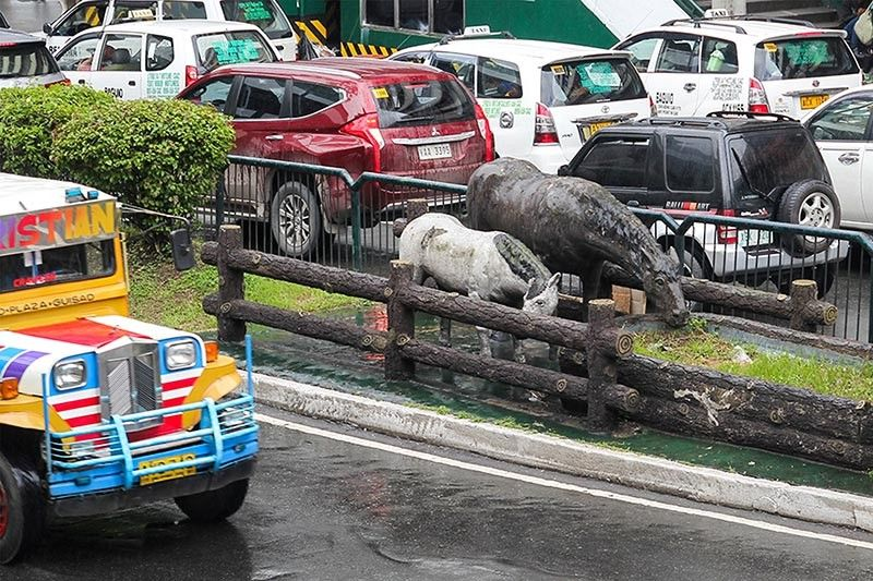 A sculpture of horses' drinking trough along Abanao street is barely noticed when traversing along the area. (Jean Nicole Cortes)