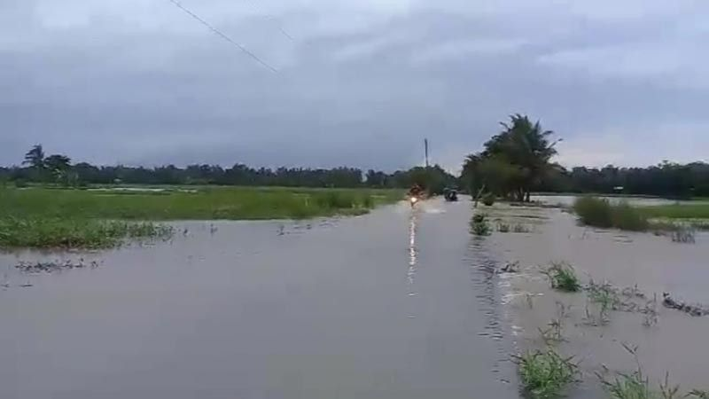 NEGROS. A portion of a rice farm in Valladolid town affected by heavy rains and flooding brought about by Tropical Storm Falcon. (Photo by Mark Cabrillos)