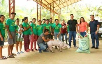 (Hulagway iya sa Talisay City Agriculture)