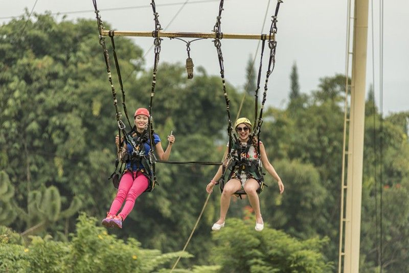 Skyswing (Contributed Photo)