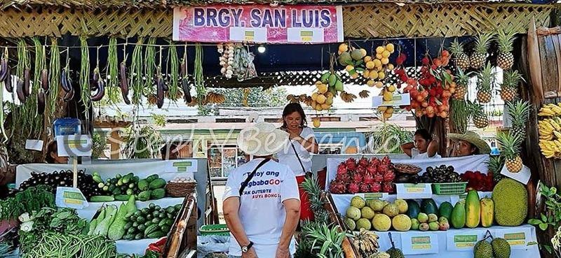 CAGAYAN DE ORO. Ang presko nga mga utanon ug prutas nga abot gikan sa nagkalain-laing barangay sa siyudad sa Gingoog gi-display atol sa Agro Fair atol sa Kaliga Festival. (Steph V. Berganio)