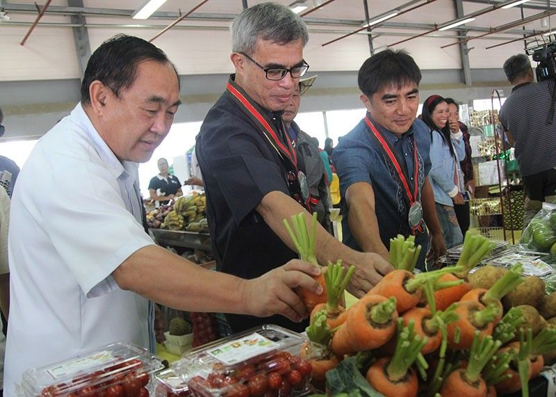 BENGUET. La Trinidad Mayor Romeo Salda together with Department of Agriculture officials checks on the quality of highland vegetables during the 2nd Highland Vegetable Festival celebration on July 24 to 26 at the Benguet Agri–Pinoy Trading Center. (Photo by Jean Nicole Cortes)