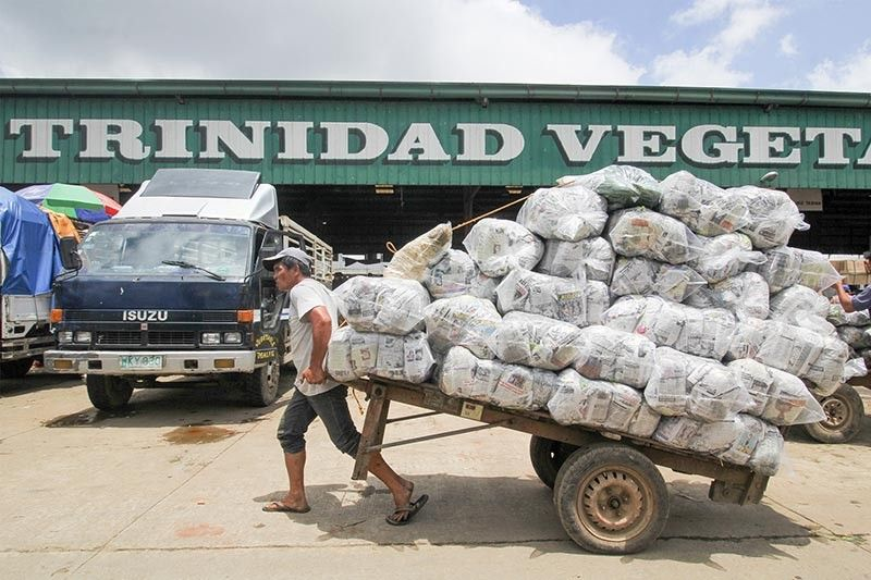BAGUIO. A porter at the La Trinidad Vegetable Trading Post carries packed vegetables ready for transport to other markets in the country. The vegetable industry remains the top economic backbone of Benguet Province. (Photo by Jean Nicole Cortes)
