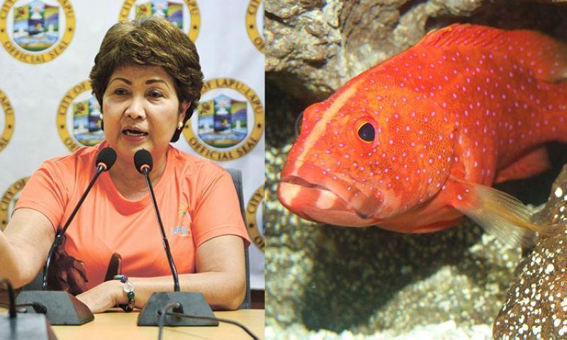 CEBU. Lapu-Lapu City Representative Paz Radaza and a