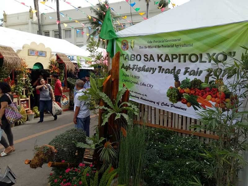 GOING GREEN. The Agri-Fair on Capitol grounds will open on Tuesday, Aug. 6, 2019 in line with the celebration of the 450th Founding Anniversary of Cebu Province. It will showcase delicacies and products from Cebu's component cities and towns. (SunStar Photo/Arni Aclao)