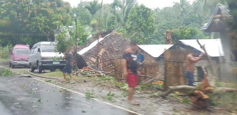 BUHAWI: Nangatumba ang mga kahoy ug dunay mga balay nga nangaguba sa lungsod sa Lavazares, Northern Samar dihang naigo sa buhawi. Pipila ka mga balay ang nangaguba atol sa katalagman. (Tampo sa Lavezares MDRRMO)