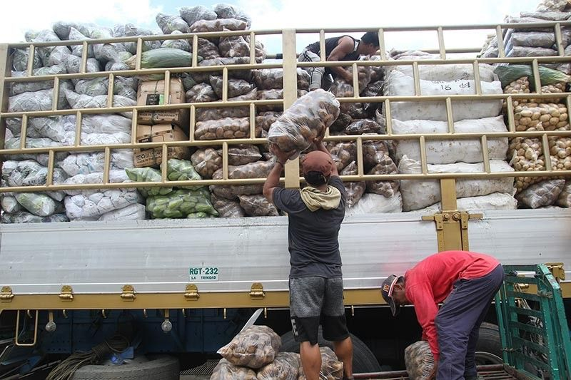 BENGUET. Porters load a variety of vegetables from the Benguet Agri-Pinoy Trading Center (BAPTC) to be delivered in various market outlets in the country. (Photo by Jean Nicole Cortes)