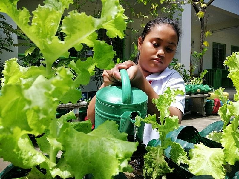 "DAVAO. A joint partnership program of the Department of Education (DepEd) and the Department of Agriculture, the ""Gulayan sa Paaralan"" program seeks to address malnutrition and promote vegetable production and consumption among schoolchildren. (Photo by Ralph G. Llemit)"