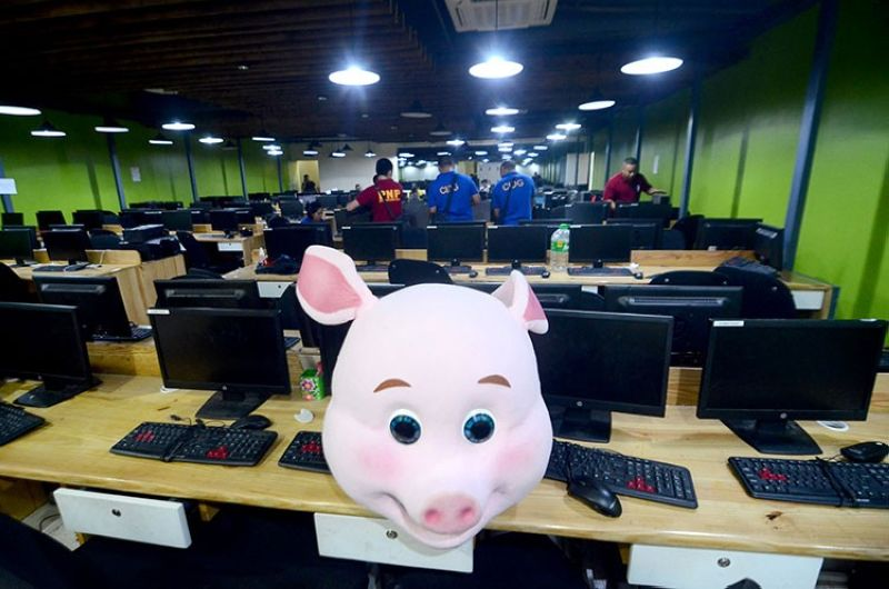 CEBU. In this June 11, 2019 photo, Criminal Investigation and Detection Group-Central Visayas personnel raid the office of Organico Agribusiness Ventures Corp. in Barangay Mabolo, Cebu City, where they find the pig mascot Baby Nico. (SunStar File)