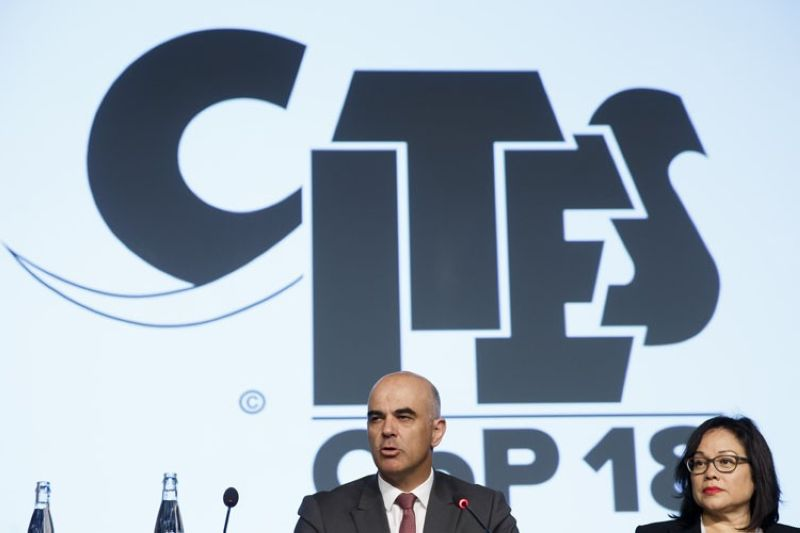 GENEVA. Swiss Interior Minister Alain Berset, center, sitting next to Ivonne Higuero, right, CITES Secretary-General ( Convention on International Trade in Endangered Species of Wild Fauna and Flora), delivers his statement, during the opening remarks of the World Wildlife Conference - CITES CoP18, in Geneva, Switzerland, Saturday, August 17, 2019. (AP)