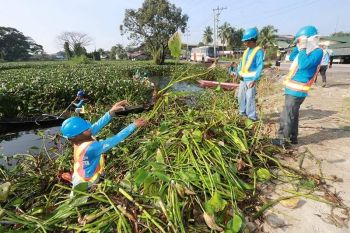 PAMPANGA. Workers of Real Steel Corporation remove water lilies in Barangay Sta. Monica and San Isidro as part of the five-day clean-up drive dubbed as