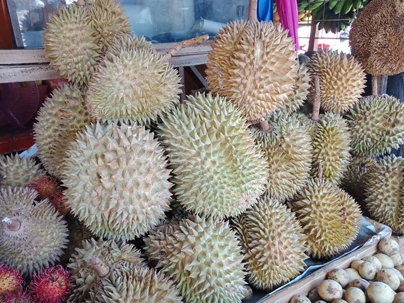 DAVAO. Prices of durian varieties are now lower than expected during its harvest season this month at P35 per kilogram (kg) at the Bankerohan Public Market. (Photo by Lyka Casamayor)