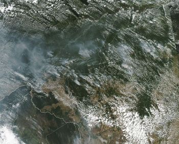 BRAZIL. This satellite image provided by NASA on August 13, 2019 shows several fires burning in the Brazilian Amazon forest. Brazil's National Institute for Space Research, a federal agency monitoring deforestation and wildfires, said the country has seen a record number of wildfires this year, counting 74,155 as of Tuesday, August 20, an 84 percent increase compared to the same period last year. (AP)