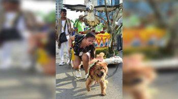 DAVAO. Gitarong sa babaye ang costume ug higot sa iyang iro nga apil sa parada kagahapon sa Pamulak sa Kadayawan ubos sa Lahi Category sa may dalang C.M Recto, Davao City. (Macky Lim)