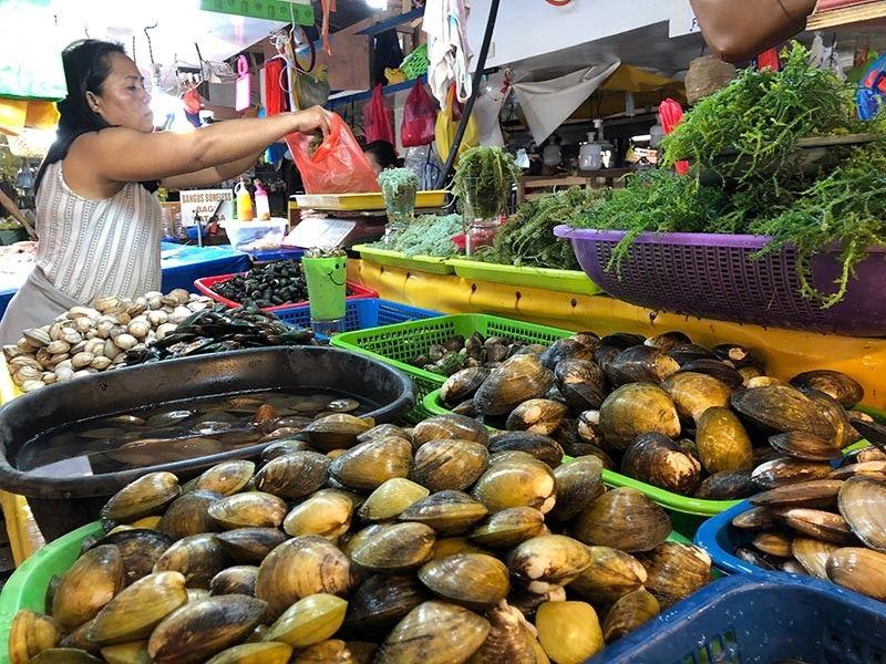 DAVAO. Okupado sa pagtimbang og lato kining tindera og kinhason sa Agdao Public Market, Davao City. Presko kaayo ang mga kinhason nga iyang tinda, samtang gibutyag sa Bureau of Fisheries and Aquatic Resources (BFAR) nga luwas na nga kaunon ang mga kinhason kay wala nay red tide. Kahinumdoman nga sa sayong kuwarter ting tuiga natala ang red tide sa kadagatan sa Mati City ug sa Davao Occidental. (Jeepy P. Compio)