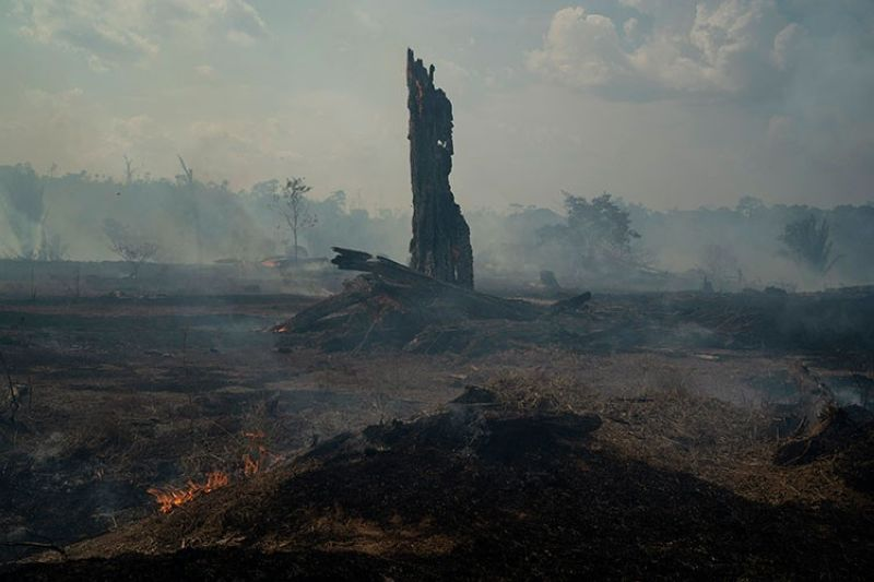 BRAZIL. Land smolders during a forest fire in Altamira in Brazil's Amazon, Monday, August 26, 2019. The fire is very close to Kayapo indigenous land located on the Bau indigenous reserve. (AP)