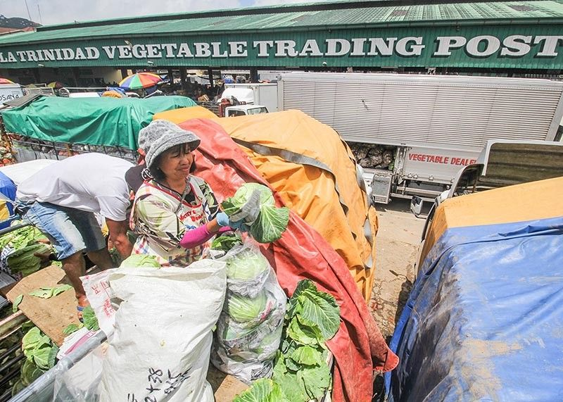 BENGUET. Due to over production during the first quarter of 2019, Philippine Statistics Authority-Cordillera revealed prices of leafy vegetables have gone down based on the Farm Prices Survey. (Photo by Jean Nicole Cortes)