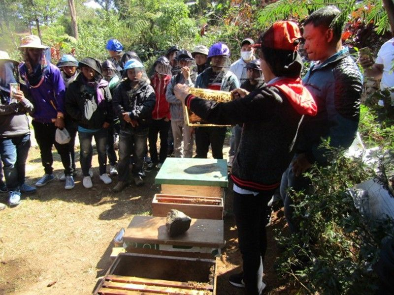 BENGUET. Beekeepers are given basic beekeeping training in Baguio City. (Photo courtesy of SLU-EISSIF)