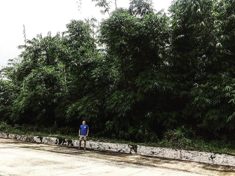 Social entrepreneur and bamboo farmer Joseph