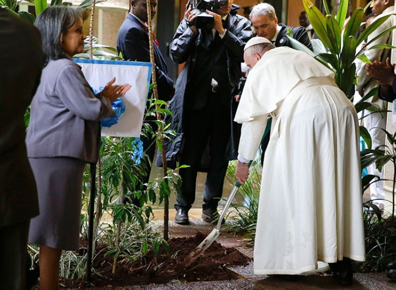 KENYA. In this November 26, 2015 file photo, Pope Francis plants a tree during a visit to the United Nations regional office, in Nairobi, Kenya. (AP)