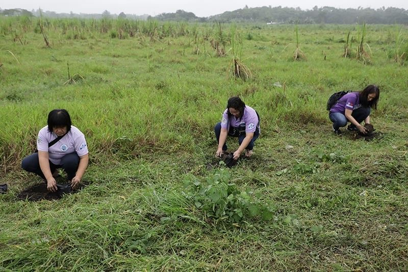 PAMPANGA. Members of the Pederasyon ng mga Kababaihang Fernandino actively participate in a tree planting activity on September 13, 2019 at Barangay Lara in line with the celebration of Women's Week. (Contributed photo)