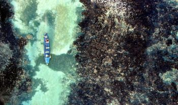 JAMAICA. White River Fish Sanctuary wardens patrol through the reef of the sanctuary's no-take zone in Ocho Rios, Jamaica, Tuesday, February 12, 2019. After a series of disasters in the 1980s and 1990s, Jamaica lost 85 percent of its once-bountiful coral reefs and its fish population plummeted. But today, the corals and tropical fish are slowly reappearing thanks to some careful interventions. (AP)
