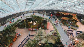 SINGAPORE. Inside Gardens by the Bay. (Ace Perez)