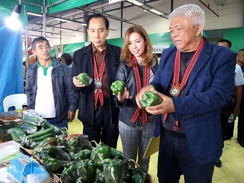BAGUIO. Agriculture Secretary William Dar with Agriculture Assistant Secretary for Agri-Business and Marketing Kristine Evangelista and Undersecretary for Consumer Affairs Ernesto Gonzales inspect organically grown green bell pepper on display during the Regional Organic Agriculture Congress at the Benguet Agri-Pinoy Trading Center in La Trinidad, Benguet last week. (Photo by Redjie Melvic Cawis)