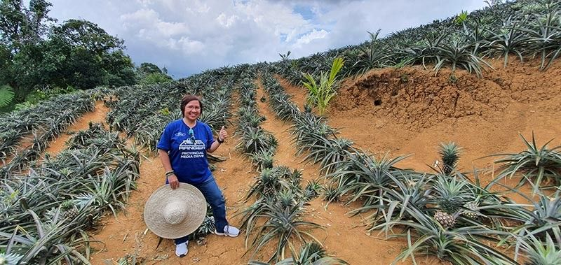 BACOLOD. At the Pineapple farm in Barangay Bago, Don Salvador Benedicto. (Contributed photo)
