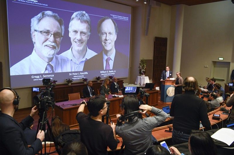 SWEDEN. Thomas Perlmann (far right), Secretary-General of the Nobel Committee, announces the 2019 Nobel laureates in Physiology or Medicine during a news conference in Stockholm, Sweden, Monday October 7, 2019. The prize has been awarded to scientists, from left on the screen, Gregg L. Semenza, Peter J. Ratcliffe and William G. Kaelin Jr. receiving the award jointly for their discoveries of