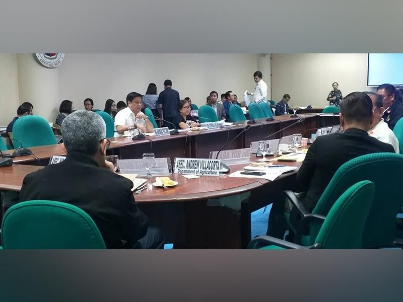MANILA. Senate Majority Leader Juan Miguel Zubiri (left) presents before the top officials of the Department of Agriculture the current state of the sugar industry in the Philippines during the hearing of the agency's proposed 2020 budget at the Senate in Pasay City Wednesday, October 9, 2019. Also in photo, Senate committee on agriculture and food chair Senator Cynthia Villar. (Photo by Erwin P. Nicavera)