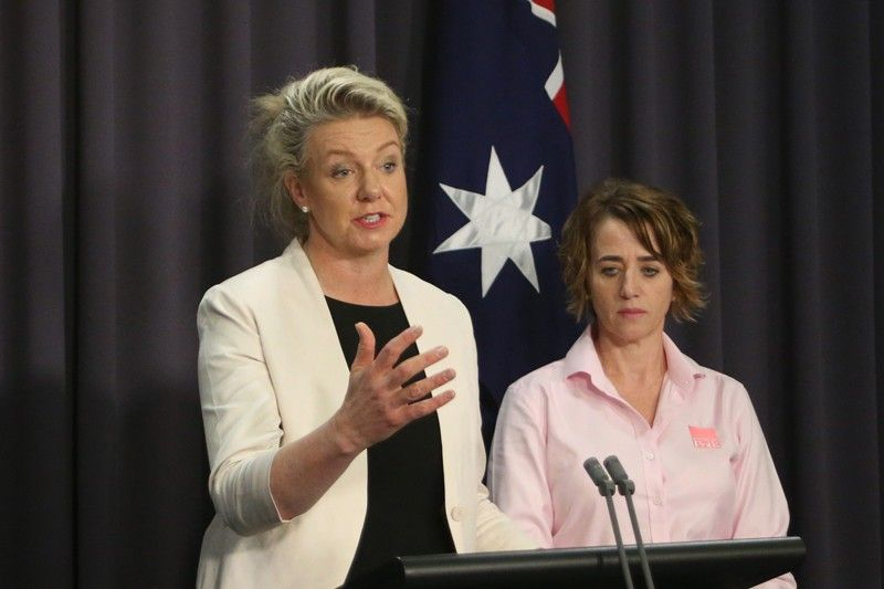 AUSTRALIA. Australian Agriculture Minister Bridget McKenzie, left, and pork industry executive Margo Andrae address the media at Parliament House in Canberra, Australia Tuesday, October 15, 2019, on the threat of African swine fever. Australia for the first time has canceled a tourist's visa over undeclared food as the country tries to keep itself free of the disease. (AP)