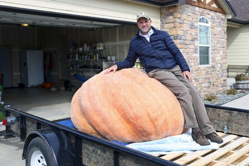 WYOMINH. In this Wednesday, October 16, 2019 photo Andy Corbin poses for a photo with his 1,491 pound pumpkin in Cheyenne. Corbin now once again holds the state record for largest pumpkin. (AP)