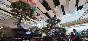The Philippine Bonsai Society Inc. showcases some of the best bonsai trees in the country during the three-day Northern Summit held at SM City Clark which concluded Sunday, October 20. Participants came from Luzon, Visayas, Mindanao and masters from Taiwan, Vietnam and China. (Photo by Chris Navarro)