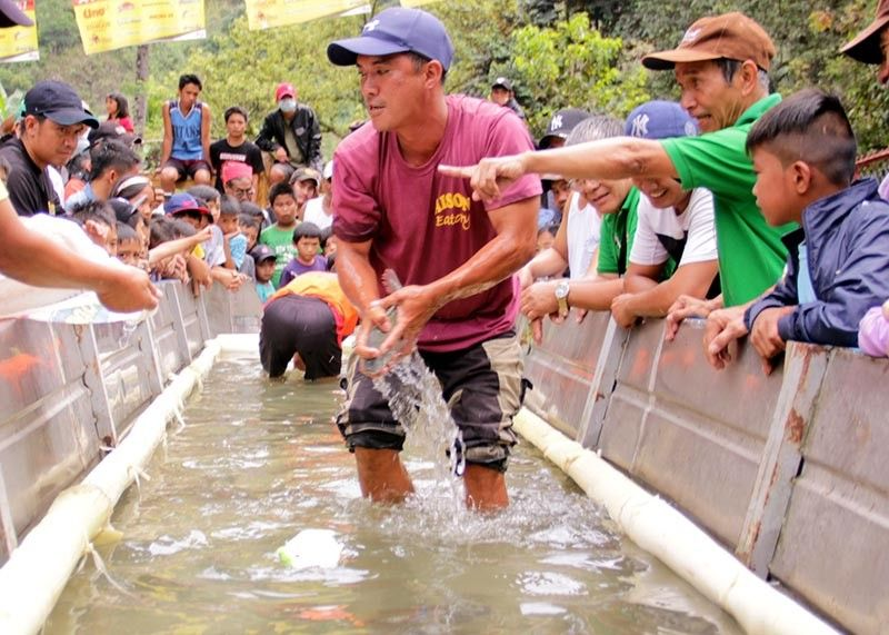 BENGUET. Participants compete in the tilapia fish catching contest as part of the Tilapia Festival in Barangay Ambuklao, Bokod, Benguet on October 25, 2019. (Photo by Lauren Alimondo)