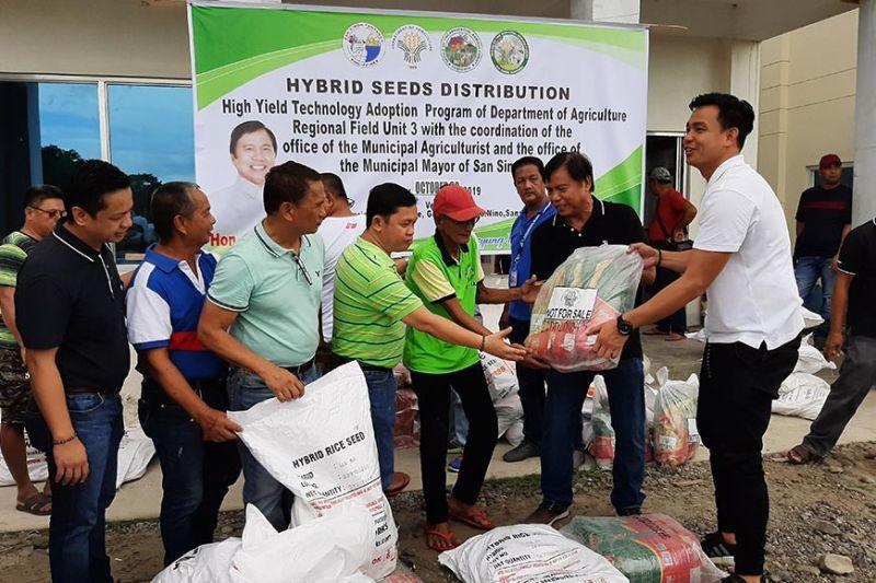 PAMPANGA. San Simon Mayor Abundio Punsalan Jr., Board Member Pol Balingit, Councilor Mark Macapagal and other local officials lead the distribution of hybrid seeds to Simonian farmers. (Princess Clea Arcellaz)