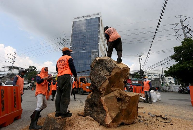 Motion denied. The Court of Appeals has denied the motion for reconsideration filed by environmentalist and lawyer Benjamin Cabrido Jr. to stop cutting trees by the roadside in Metro Cebu, saying it is not convinced that Cabrido's petition was sufficient in form and substance to warrant the issuance of a Writ of Kalikasan. SunStar File Photo