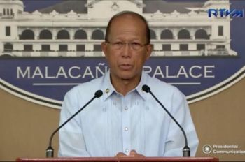 Defense Secretary Delfin Lorenzana (File Photo)