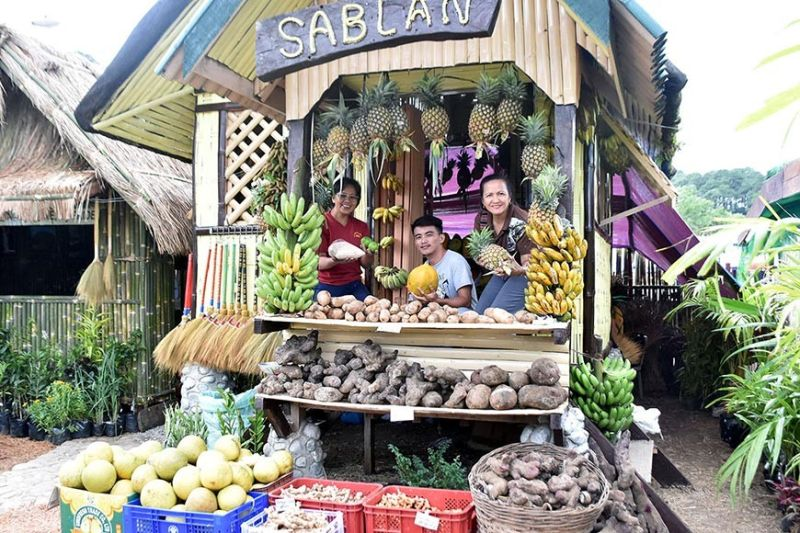 FRUITS GALORE. Locally produced fruits and vegetables of the Municipality of Sablan are featured and for sale at the Agri-Industrial Trade Fair as part of the 119th Benguet Foundation Anniversary at the Benguet Sports Complex in La Trinidad, Benguet which formally opened on Monday. (Redjie Melvic Cawis)