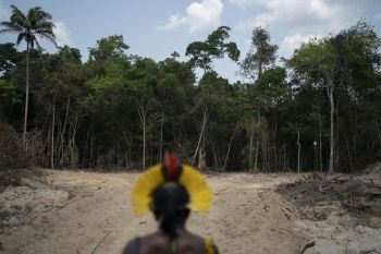 BRAZIL. In this August 31 file photo, Krimej indigenous Chief Kadjyre Kayapo of the Kayapo indigenous community looks out at a path created by loggers on the border between the Biological Reserve Serra do Cachimbo (front) and Menkragnotire indigenous lands in Altamira, Para state, Brazil. A Brazilian government report said Monday, November 18, that the rate of deforestation in Brazil's Amazon rainforest is at its highest level in more than a decade, undermining officials' claims that concerns by environmentalists have been overblown. (AP)