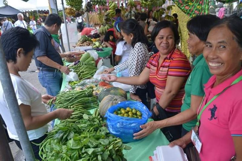 Some of the booths showcasing wide-variety of organic and naturally-grown crops and other products of the province during the four-day 14th Negros Island Organic Farmer's Festival held at the Provincial Capitol Grounds in Bacolod City until Saturday. (Richard Malihan photo)