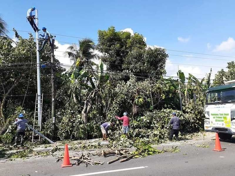 ALBAY. The Albay Public Safety and Emergency Management Office (APSEMO) trims trees along national highways as a typhoon mitigation project. The project started on November 13, 2019. (Photo from Al Francis Bichara Facebook)