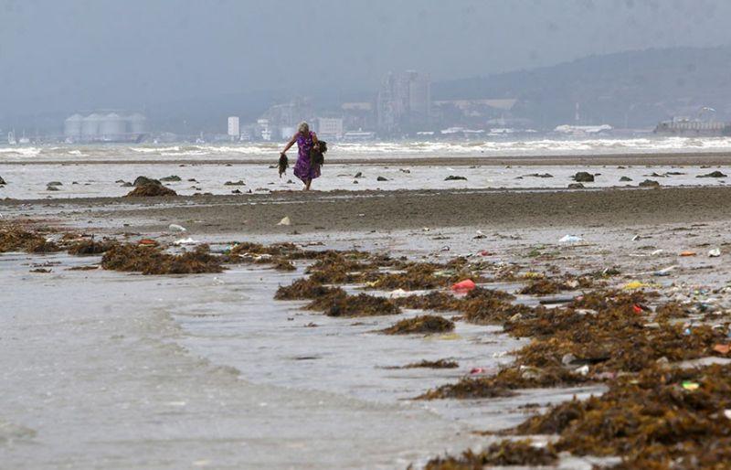 TISOY: Usa ka hamtong babaye nanguhag seaweeds sa baybayon sa Pooc, Talisay City nga nadala sa dagkong mga bawod tungod sa hinungaw sa bagyong Tisoy. (Alex Badayos)