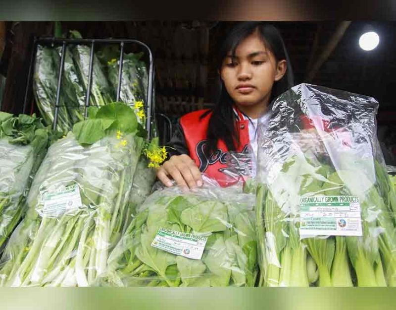 BENGUET. A resident of Tublay, Benguet displays her organic produce from their town. (Photo by Jean Nicole Cortes)