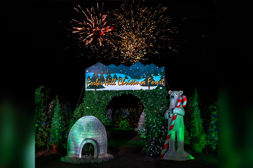 "Contributed Photo: The ""Forbes Hill Christmas Forest"" poised as the country's largest Christmas tree park lighting up Bacolod City."